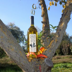 Olive Oil 25.4 oz (750 ML)-0