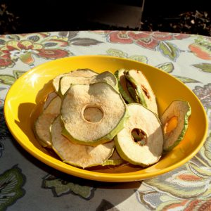 Dried Organic Granny Smith Apples 0.20 lb-0
