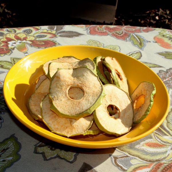 Dried Organic Granny Smith Apples 0.20 lb-0